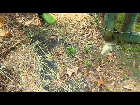 Weeding Made Easy - Year Round Mulch Garden