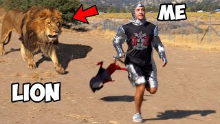 Can I Survive In A Lion's Den For 60 Minutes Straight?