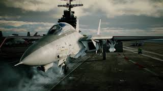 Aircraft Profile: F-14D preview image