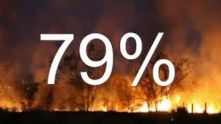 Cháy rừng Amazon tác hại đến biến đổi khí hậu