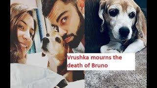 This family member passes away from Vrushka family..