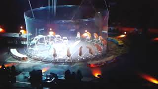 Best show on earth Ringling brothers  Barnum and Bailey's circus!!!