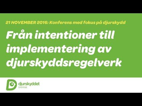 Med fokus på djurskydd: Från intentioner till implementering (DEL 3)