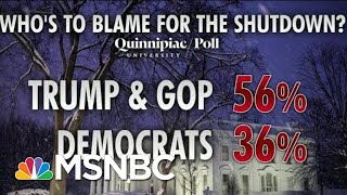 Most Blame President Donald Trump, GOP For Shutdown, Polling Shows | Morning Joe | MSNBC
