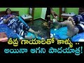 MLA Roja receives treatment to her injured legs during Padayatra-Exclusive visuals