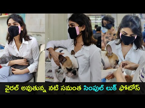 Actress Samantha spotted with pet dogs at vet clinic, her simple look pics go viral