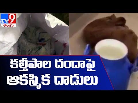 రంగారెడ్డి జిల్లా మల్కిజ్ గూడలో కల్తీ పాల దందా - TV9