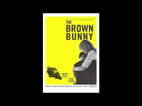 brown bunny stream