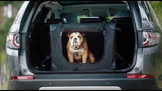 Land Rover Dog-Friendly Pet Packs