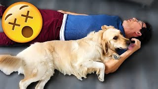 Playing Dead with CHICA!!