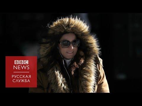 В США рекордные морозы: сибиряки советуют американцам, как пережить холода photo