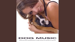 Serenade - Schubert - Classical Music - Dog Music For Dogs