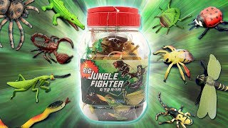 Big Jungle Fighter - Learn Insect & Bugs Names For Kids! Big Size Insect & Bugs Education Video