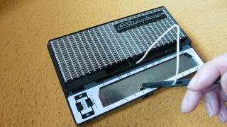 Stylophone - The House of the Rising Sun (Instrumental)