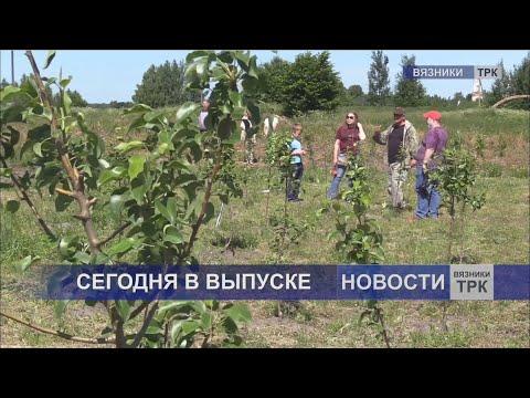 """""""Новости"""" от 06.07.2020г."""
