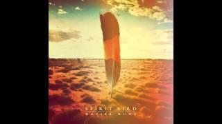 Xavier Rudd - Spirit Bird (audio HQ)