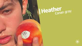 [1hour] Conan Gray - Heather