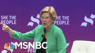 Senator Elizabeth Warren On Why You Should Vote For Who You Believe In | All In | MSNBC