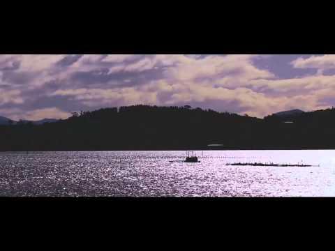 TASTECATIONS - Barilla Bay Oysters