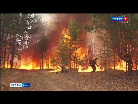 В Коми ожидается чрезвычайно высокая пожароопасность