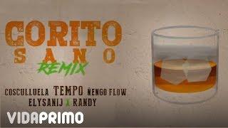 Tempo x Cosculluela x Ñengo Flow x Randy x Elysanij - Corito Sano (Remix) [Official Audio]