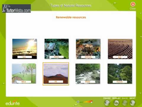 Types Of Natural Resources Youtube