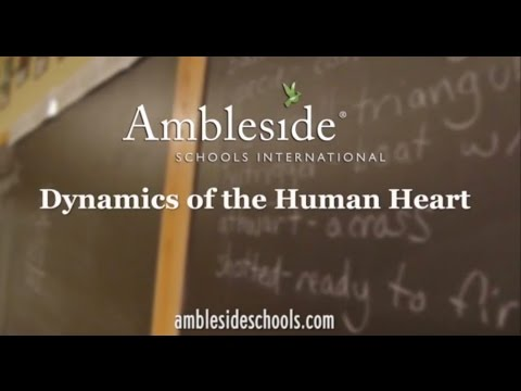 Maturity Dynamics of the Human Heart Part1A
