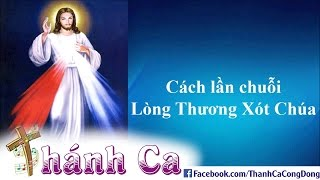 How To Pray The Chaplet Of The Divine Mercy (Vietnameses) - Joseph Tran Dinh Long