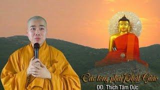 Các Tông Phái Phật Giáo - ĐĐ Thích Tâm Đức