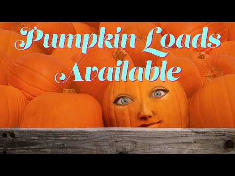 Pumpkin Loads Available