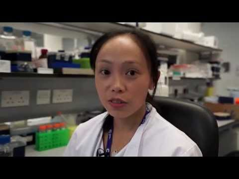 Dr Amber Yu - Amber's Research