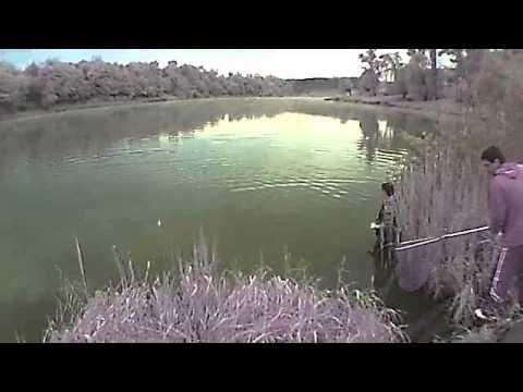 ловля толстолоба со дна оснастка видео