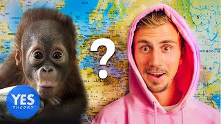 Letting a Monkey Decide which Country we Fly to...