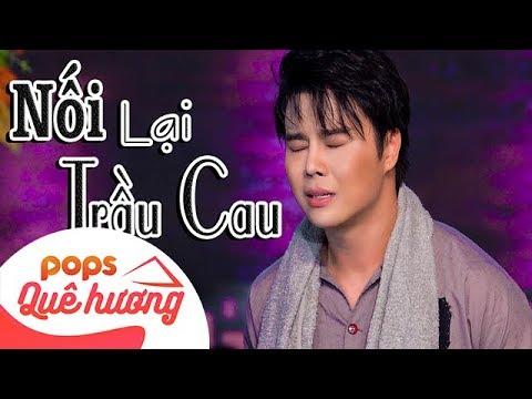 Nối Lại Trầu Cau | Võ Minh Lâm ft Như Huỳnh