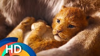 The Lion King (2019) - Vua Sư Tử Live-action - Official Vietsub Teaser Trailer