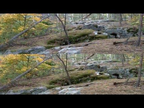 Каменные останцы в Гремячем и в Смолькино в 3D. Самарская область.