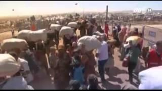 VTC14_Thảm cảnh người Syria chạy loạn