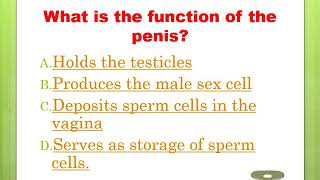 Quick Memory Test on Human Reproductive System