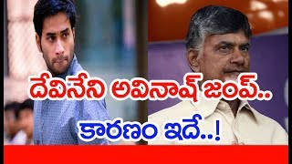 Why Devineni Avinash quitting TDP, joining YSRCP?..