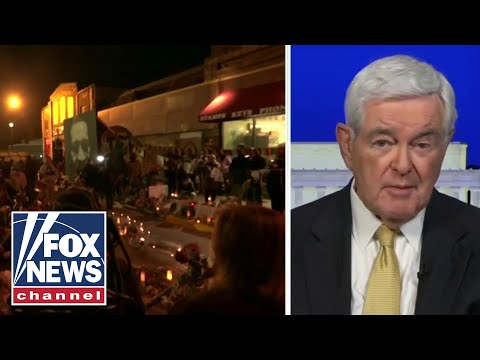 Newt Gingrich: Democrats undermining the ability of police to function