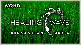 Relaxation Meditation Music 3 HOURS