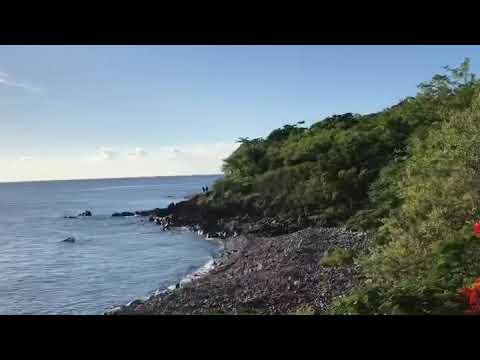 Sources chaudes de THOMAS (Bouillante - Guadeloupe)