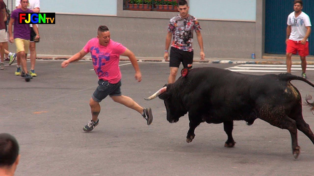 3 Toros Sants de la Pedra 2015 - La Vilavella (Castellon)