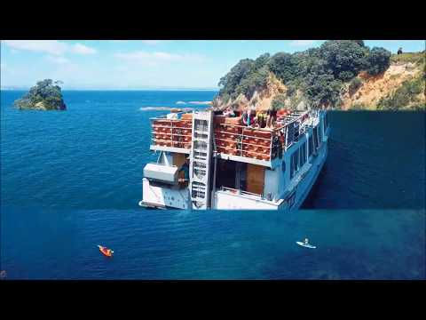 video The Best Day Ever Cruise
