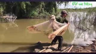 Quang Chài Bắt Cá Chép Sông Nướng Món Cá Chép Tuyệt Đỉnh