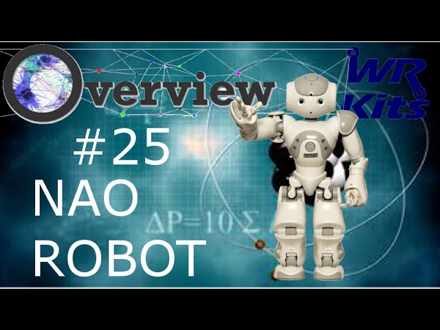 NAO ROBOT | Overview #25
