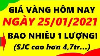 Giá Vàng Hôm Nay Ngày 25/01/2021 - Giá Vàng 9999 Bao Nhiêu 1 Lượng!