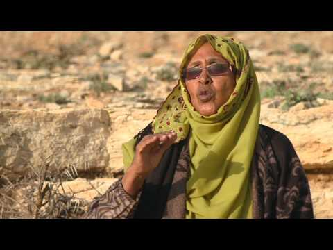 Promoting Women's Political Participation for Development of Peace and Security in Somalia