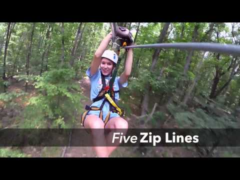 Salamander Tree Top Zip Tours by Empower