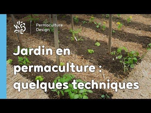 Le potager urbain de drummondville qu bec musica movil for Jardin urbain permaculture